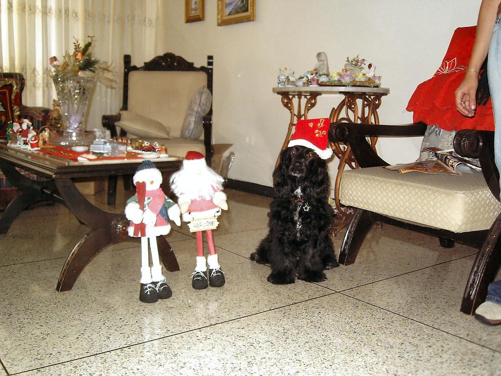 Nahomi navideña