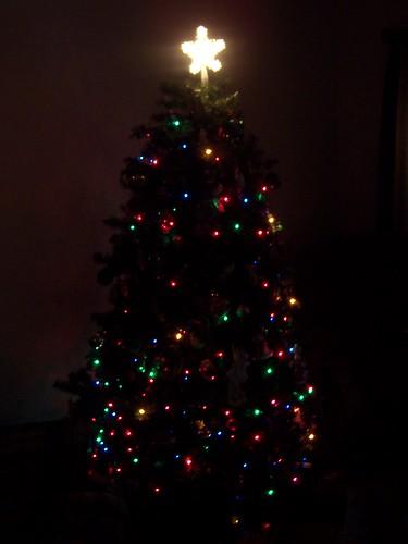 christmas 023