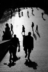 (Nocturnales) Tags: paris bw street streetphotography stroll flatten light shadow silhouette trocadero rue mikaelmarguerie street5bob