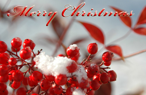 Christmas Wallpaper 8