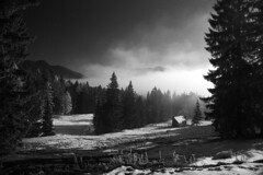 Predigtstuhl (guenterleitenbauer) Tags: pictures winter bw white black mountains art nature monochrome berg canon landscape austria landscapes photo google flickr foto image photos kunst fineart natur fine htte bad picture images berge fotos com alm 5d sw imaging canon5d monochrom alpen dslr bild schwarzweiss schwarzweis landschaft weiss schwarz bilder landschaften gnter gebirge almen goisern badgoisern fotografien guenter predigtstuhl landschaftsfotografie leitenbauer aspect43 aspect1610 wwwleitenbauernet