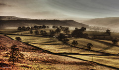 View from Beeley Moor (Stevacek) Tags: trees mist fog d50 landscape countryside nikon derbyshire hills fields hdr chatsworth beeley tthdr beeleymoor stevacek topofthefog