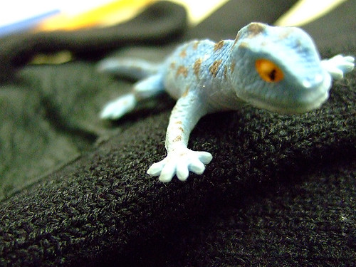 Simon the Lizard