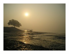 sunrise fog | Raichak (arnabchat) Tags: india water fog sunrise river boat explore bengal hooghly supershot raichak arnabchat arnabchatterjee