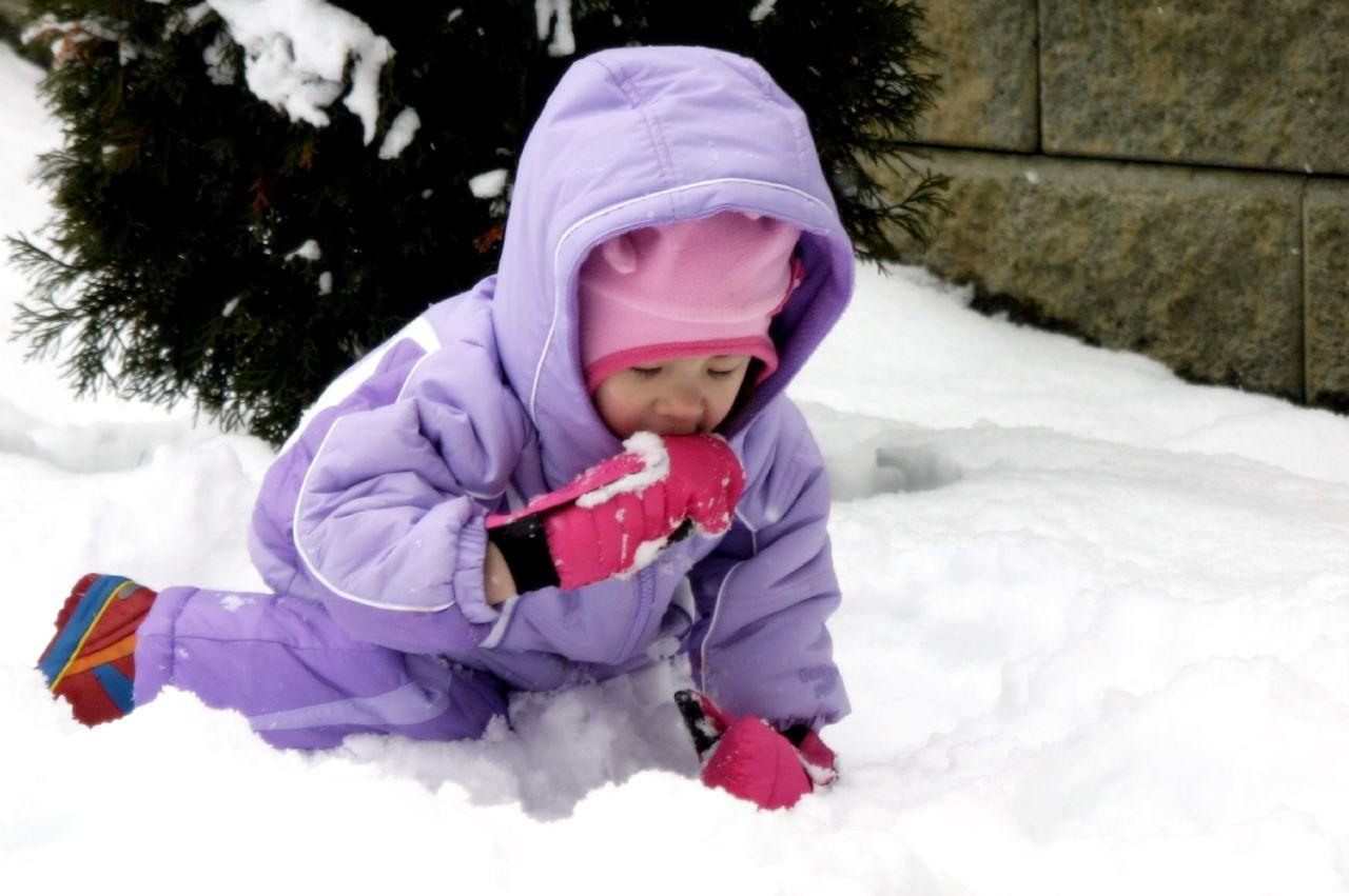 Skyler eating snow again!