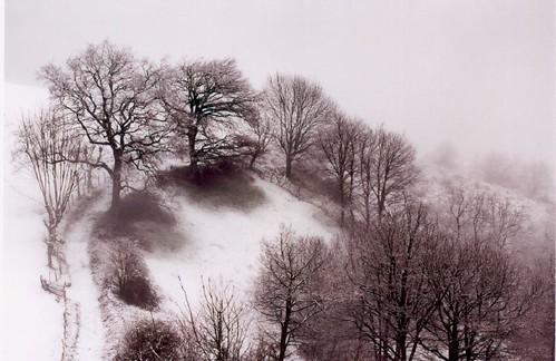 Fotografía: portfolio flickr-27 de bidari