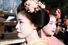 Umeha and Miharu (mboogiedown) Tags: travel woman girl beauty japan asian japanese interestingness kyoto shrine asia traditional culture explore maiko geiko geisha kimono gion tradition february kansai higashi hanamachi yasaka miharu interestingness181 hanakanzashi discoverkyoto umeha gionsan