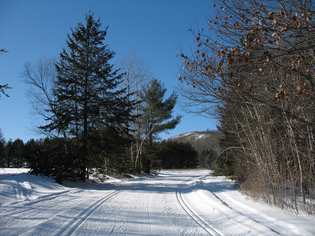 Taylor Lake trail