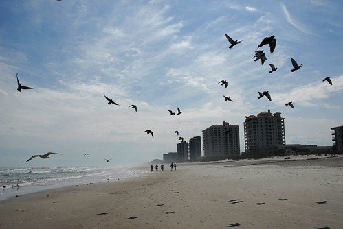 jacksonville beach florida in february by Alida's Photos