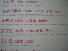 Stab the body, sauce of XO explode (Box of Badgers) Tags: china menu engrish chinglish datong chinesetoenglish