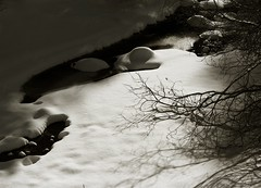 Winter Landscape as Tone Poem (MaureenShaughnessy) Tags: trees winter white snow cold texture ice water creek 510fav frozen montana stream soft pattern shadows seasons branches beautifullight clarity zen round utata form february icy lightshadow almostblackandwhite brrrr 4seasons newwestnet abigfave seasonalrhythmswinter februaryinmontana
