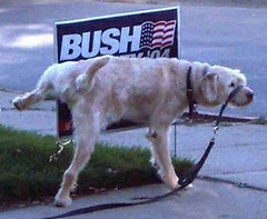 Doggie Politician