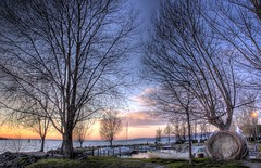Trees in backlighting (R.o.b.e.r.t.o.) Tags: trees sunset italy lake alberi lago italia tramonto roberto umbria trasimeno hrd globalvillage2