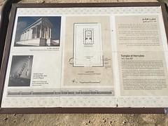 (ourlime) Tags: jordan amman citadel templeofhercules