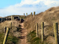 Sandy Path (T-BaySurfer) Tags: ireland sand path sanddunes coclare doonbeg doughmore