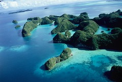 PALAU (BoazImages) Tags: ocean above blue sea sky seascape green nature forest ilovenature island amazing scenery pacific exotic pacificocean tropical palau cotcmostinteresting lpseascape