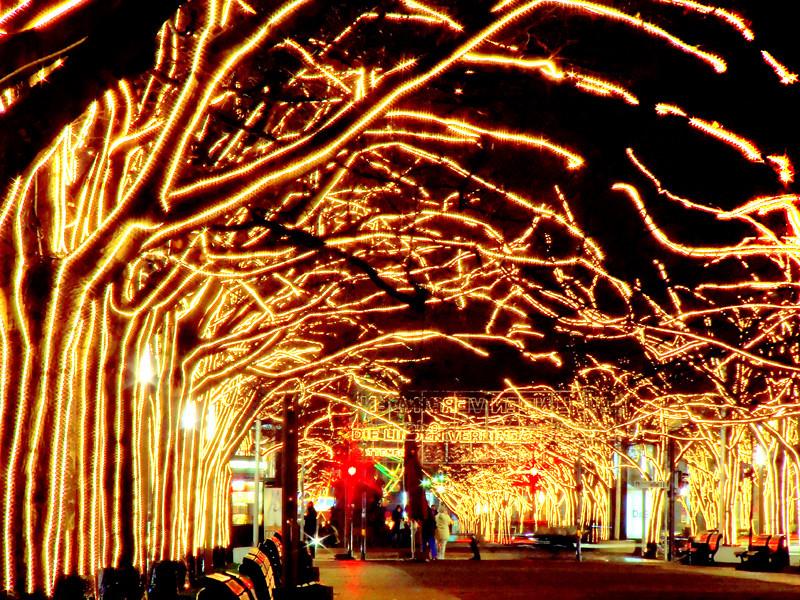 Xmas lights - Unter den Linden