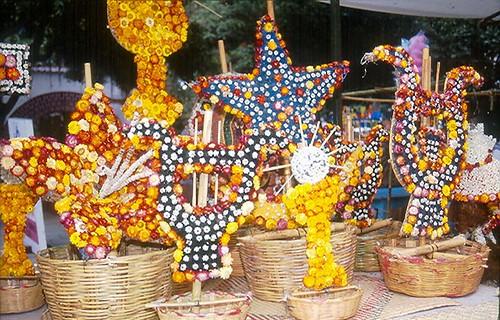 Oaxaca dried flowers