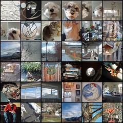 DayPix New Year 02006 Mosaic