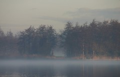 Wood, Water & Fog ... (Berta...) Tags: wood water fog berta twiske