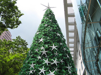 The Paragon Star Tree at Daylight