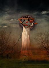 letting dreams come true - surreal dreams light art come letting