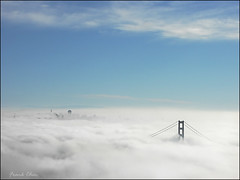 SF Sea of Clouds (fcphoto) Tags: ocean sf sanfrancisco california city bridge blue sea sky usa cloud sun white history nature fog clouds bravo minolta quality military sunny clear goldengatebridge suspensionbridge magicdonkey outstandingshots specland fcphoto artlibre outstandingshotshighlight bratanesque