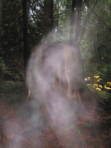 Ghost of Bowen Island by Philippe Sokazo on Flickr