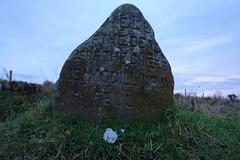 Mackintosh Clan Stone 1 (kris.mackintosh) Tags: scotland culloden mackintosh clanstone