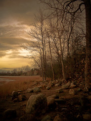 autumn-shoreline (Joel Bedford) Tags: autumn toronto canada fall nature photoshop river landscape bedford design photo still rocks joel ottawa processing jab shorline ottawariver lightroom treatment jalex jalexphoto jbedford joelbedford jbedfordphoto