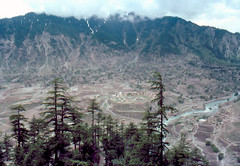 Kalam valley from Buyu (yumievriwan) Tags: pakistan mountains forest nwfp kalam yashicafx3 kohistan lpdown worldwidelandscapes