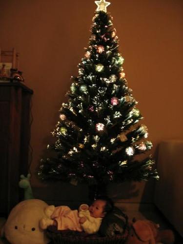 Talia under Christmas Tree