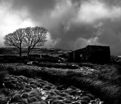 Top Withens a.k.a. Wuthering Heights (Dan65) Tags: uk england blackandwhite bw emily mood top foreboding yorkshire atmosphere bront moor heights bronte moorland haworth stanbury wuthering withens earnshaw