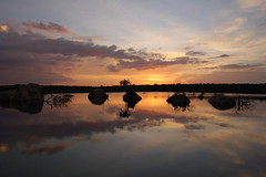At The End Of The Day (Patrick Costello) Tags: sunset d50 lagoon srilanka specland specnature yalavillage