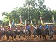 Bandeiras (Miguel Lahr) Tags: rio grande do cavalo sul bandeiras rodeio crioulo