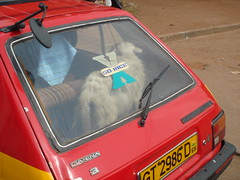 DSC00042.JPG (XanGo Goodness) Tags: africa xango goodnes