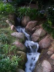 Flowing Stream so bubbly