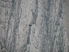 IMG_0023 (enriquevera2000) Tags: mexico paul climbing nuevoleon monterrey scouting lahuasteca recon escaladaenroca paulvera abuelofuego