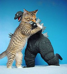 kitty vs. godzilla (Gen Kanai) Tags: funny kitty godzilla