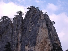 bosna 3 (Denjev) Tags: wild beauty bosnia bosna