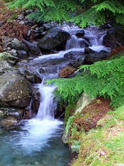 Waterfall next to Thirlmere (floato) Tags: uk england copyright favorite naturaleza lake color colour wet water beauty century river see photo waterfall interesting stream day foto fotograf photographer view shot photos britain unique district or famous watch group lakes 21st favorites natura best professional clear explore photograph fotos enjoy cumbria attractive favourites welcome exquisite fabulous favourite marvelous groups expert grouping favorited eyecatching favourited thirlmere fotograph fotographer wythburn a so floato pleaseaskifyouwanttouseaphotoiusuallysayyes