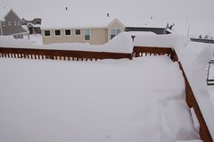 Our deck is almost buried
