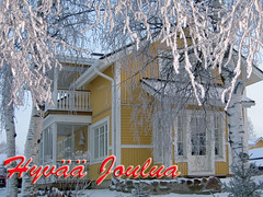 Merry Xmas (Vaeltaja) Tags: blue trees winter white house snow building home suomi finland december oulu talo lumi talvi birches koti sininen rakennus puut maisemat keltainen kuivasjrvi joulukuu koivut valkoinen
