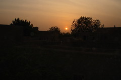 MAL-Djenne0601-111-OR (anthonyasael) Tags: africa city houses sunset shadow sky orange sun black tree contrast landscape evening afternoon atmosphere romance shade romantic late mali djenne asael anthonyasael