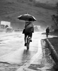 (jcfilizola) Tags: umbrella chuva bicicleta ptbr130