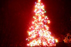 Tree on fire (SighlentJ) Tags: christmas xmas decorations color tree fire lights long exposure 2006 ornaments treeonfire thanxmom