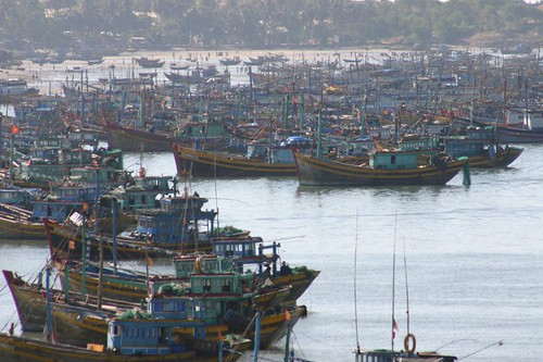 Fishing boats en masse at Mui Ne Fishing Village