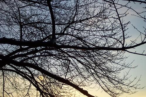 obituaries fort wayne diane winters