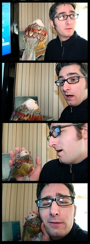 Bird in Love - Daily Self Portrait - January 10, 2006
