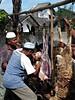 Potong Kambing (Mangiwau) Tags: fashion festival kids indonesia java blood sheep muslim islam goat meat butcher goats cap gore cutting lamb ritual raya hari jawa kambing bogor sacrifice islamic gruesome skinning adha grisly domba sunda sacrificial potong butchering pici rimless idul eidul